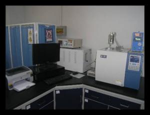 气相色谱仪(非甲烷烃专用)